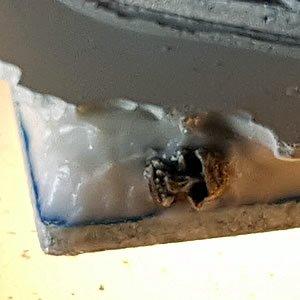 Skull in the Ice